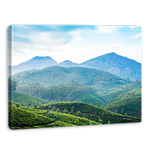 PhotoAffections landscape Canvases